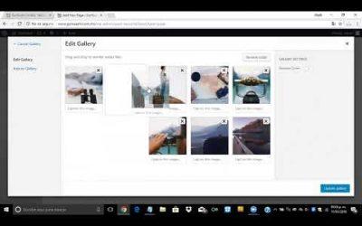 ¿Cómo crear una galería con Divi en WordPress?