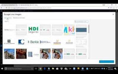 ¿Cómo insertar logo y favicon con Divi en WordPress?